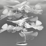 chlorophilia_gallery3381314-960x540